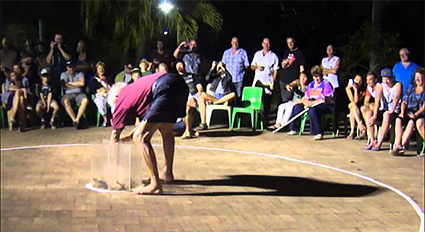 cane_toad_races_magnetic_island